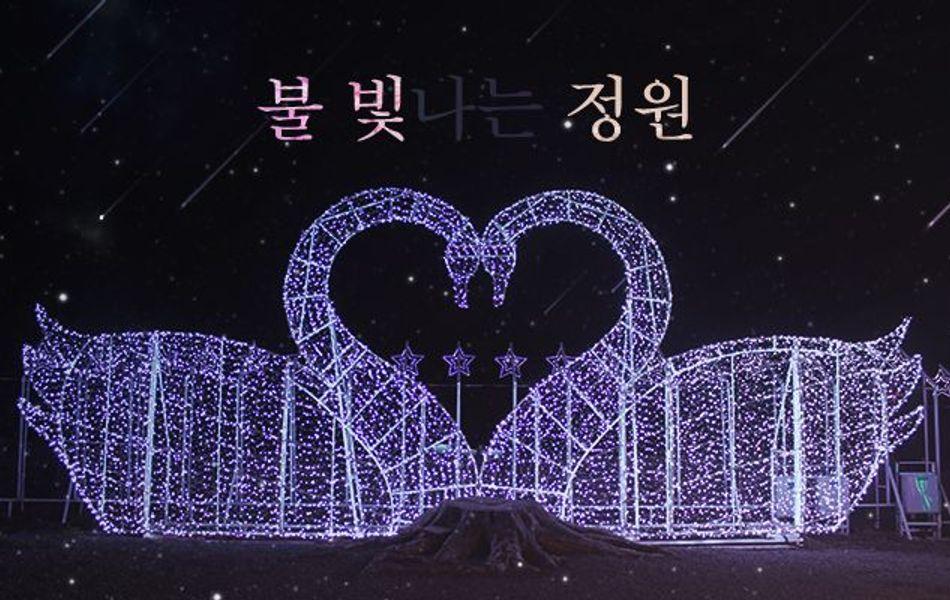 [제주 서귀포] 불빛정원 + 인생사진관